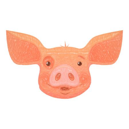 Cute pig cartoon. Pig head isolated illustration