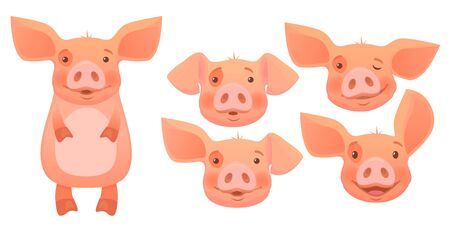 Cute pig cartoon isolated set. Vector illustration