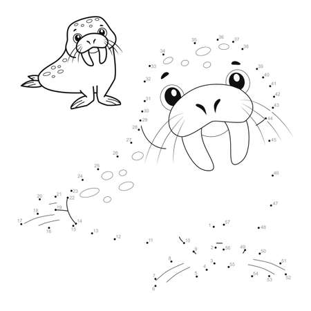 Dot to dot puzzle for children. Connect dots game. walrus illustration