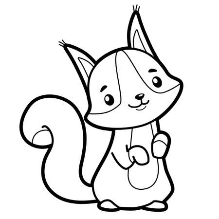 Coloring book or page for kids. squirrel black and white vector illustration