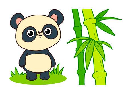 Cute panda cartoon. Bamboo clipart vector illustration