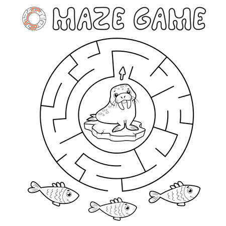 Maze puzzle game for children. Outline circle maze or labyrinth game with walrus. Vector illustrations