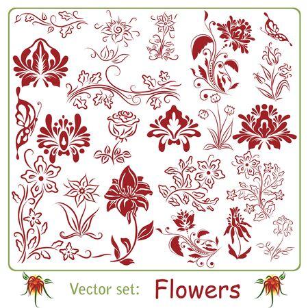 set: Flowers Stock Vector - 18263201