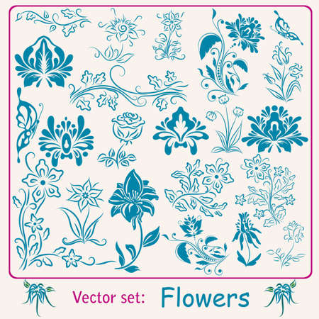 Big set of vintage Flowers. Vector illustration Vector