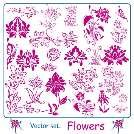 butterfly flower: Big set of vintage Flowers. Vector illustration