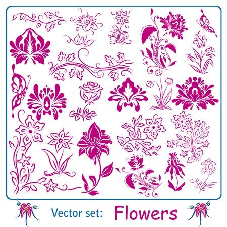 flor violeta: Gran conjunto de flores de �poca. Ilustraci�n vectorial