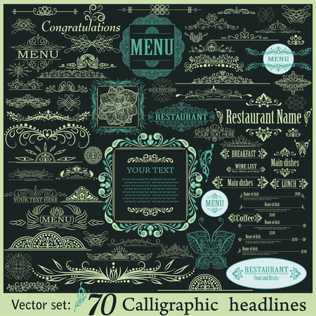 with sets of elements: Vector set of calligraphic vintage design elements