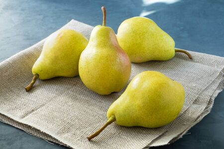 A few fresh pears lie on a simple coarse rustic napkin on a dark blue background. Healthy eating. Horizontal orientation, selective focus.