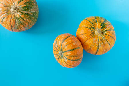 Three ripe beautiful pumpkins on a blue background. Horizontal orientation, top view.
