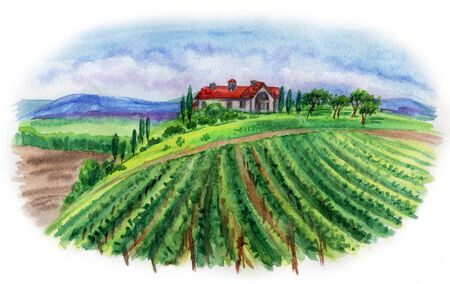 Landscape with house and vineyard, watercolor painting. 写真素材