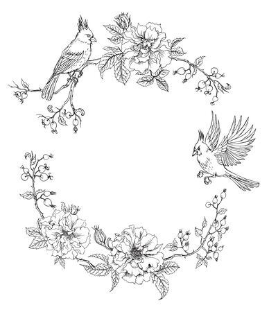 Frame of birds of cardinals and climbing roses, contour black and white drawing, can be used as a coloring page for children and adults.