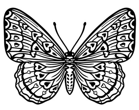 Black and white decorative butterfly, creative concept, linear drawing, silhouette, isolated vector illustration on white background. Image with an insect for stencil, tattoo, stamp and other designs.