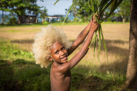 black ancestry: Chea Village, Solomon Islands - June 15, 2015: A boy with blond hair and coloured skin swinging with the leaves of a tree. Editorial