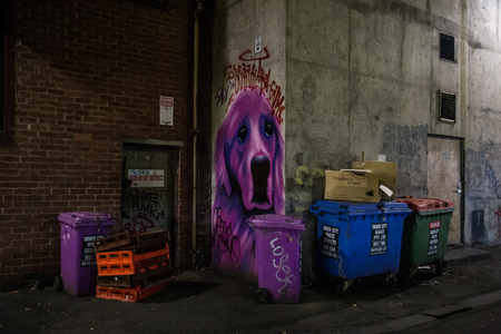 youth crime: Melbourne, Australia - April 22, 2015: A graffiti in the alleyways of Melbourne.