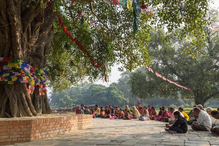 birthday religious: Lumbini, Nepal - November 27, 2014: Pilgrims praying under Bodhi tree at Buddhas birtplace. Editorial
