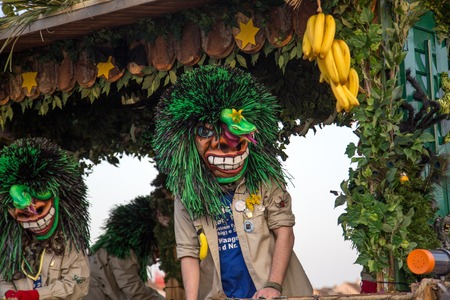 dressed up: Basel, Switzerland - March 10, 2014: Dressed up person, a so called Waggis at the traditional carnival parade