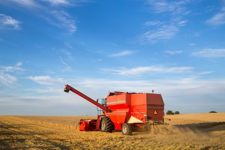 danish: A combine harvester at work on a field in Denmark.