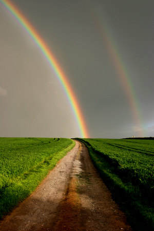 end of rainbow: At the end of the rainbow