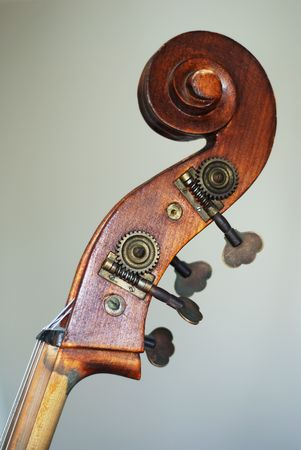 the neck and pins of the contrabass Stock Photo