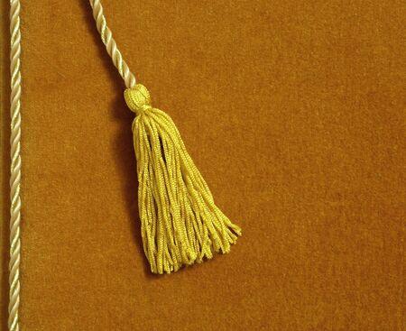 tassels: yellow velvet album with a tassel (bookmark)