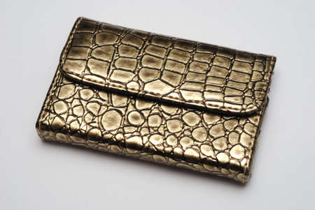 textured leather gold purse against white background Stock Photo - 4806205