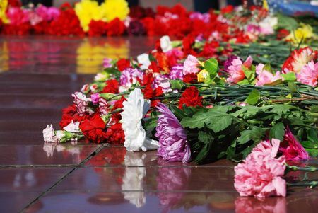 arrangment: white yellow red pink flowers on the rock Stock Photo
