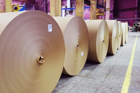 paper factory: rolls of kraft paper in the workshop    Stock Photo