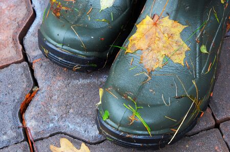 closeup of pai rubber boots with autumn leaves outdoors photo