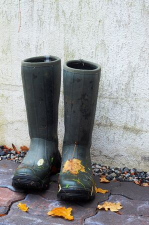 pair of rubber boots with autumn leaves outdoors photo