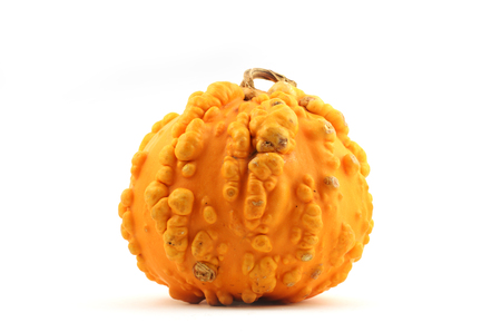 yellow squash with pimples on a white  Stock Photo
