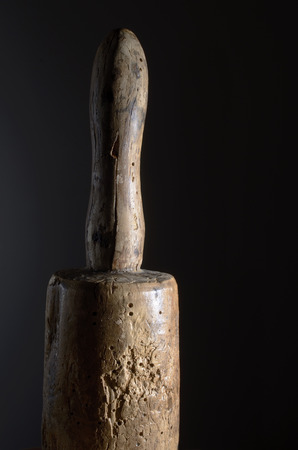 phallic: madera barrenadores de la madera mallet polilla sobre un fondo oscuro