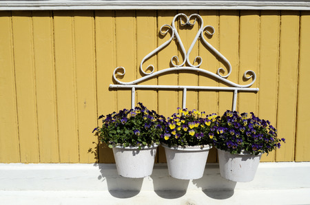 three white pot with flowers on yellow wall, horizontal photo