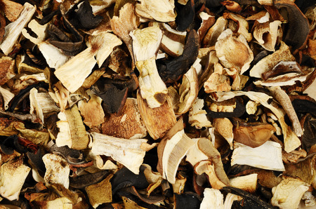 top view of mixed dried mushrooms, fill the frame photo