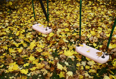 teeter: teeter on the playground covered with autumn leaves