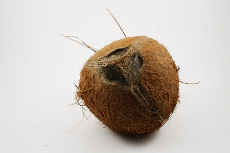 funny coconut look like a human face
