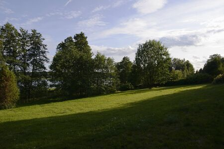 summer landscape, sunlight on the lawn, trees Banque d'images - 132115450