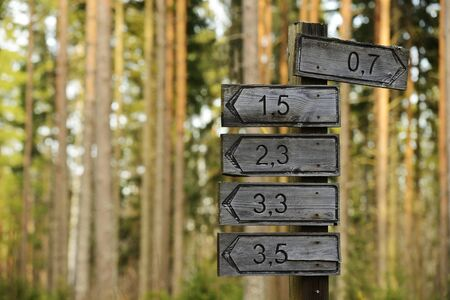 wooden signs of directions and distances in the forest