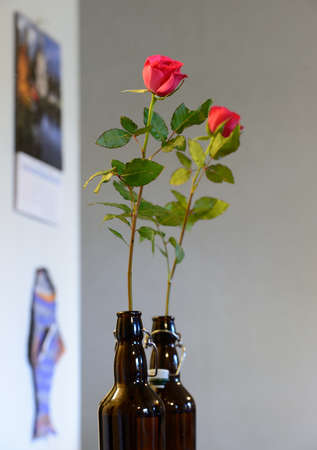 rose in a dark glass bottle and its reflection in the mirror