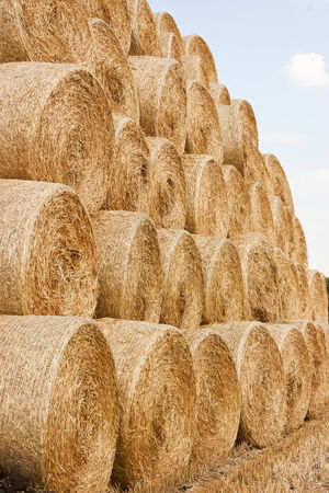 hay and straw bales in the end of summer photo