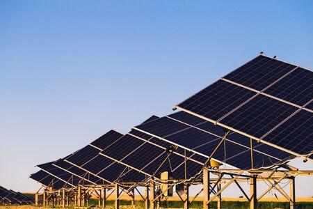 paneles solares: Los paneles solares en el campo de fondo y el cielo azul