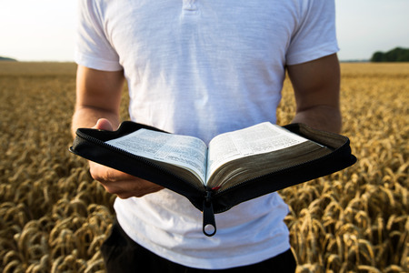 Man holding open Bible in a wheat field Imagens - 43196391