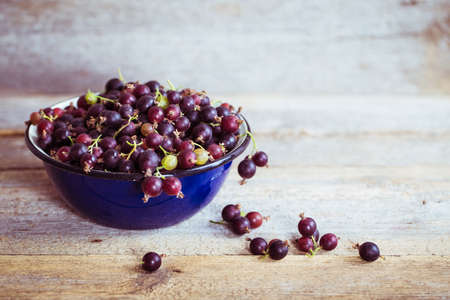currant: currant with gooseberries