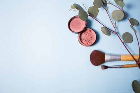 applicator: Powder, brush and eucalyptus branch on a blue background