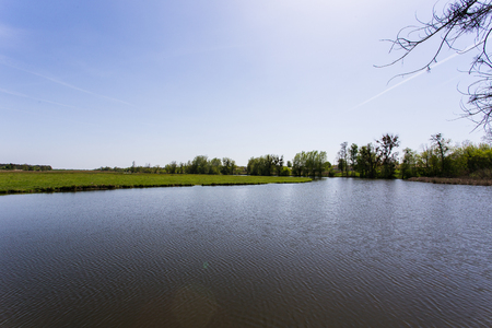 green grass with a river on background