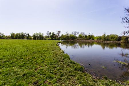 배경에 강이있는 녹색 잔디 스톡 콘텐츠 - 80167247