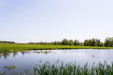 배경에 강이있는 녹색 잔디 스톡 콘텐츠 - 80369772