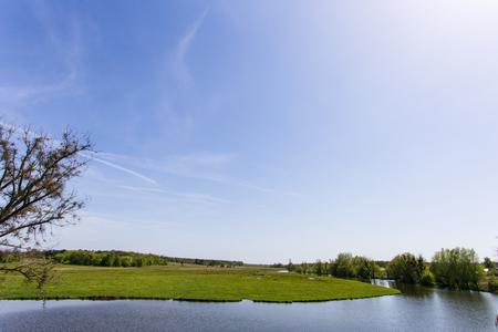 배경에 강이있는 녹색 잔디