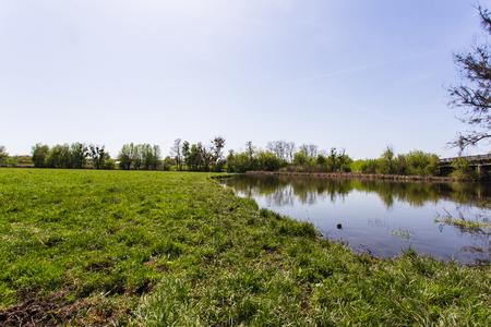 배경에 강이있는 녹색 잔디 스톡 콘텐츠 - 83535782