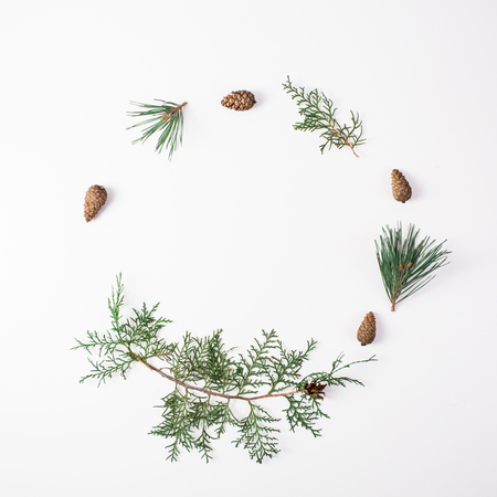 Pine branch with cone on a white background for Christmas decorations Stock Photo