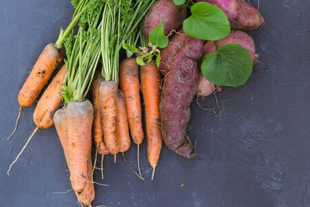 Fresh carrots and sweet potato on a black background